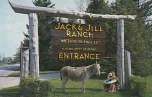 ROTHBURY, Michigan, 1950-1960s ; Pedro the Ranch Mascot at Jack & Jill Ranch