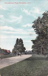 Horse and Buggy - Maplewood Park, Rochester, New York - pm 1908 - DB