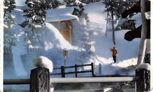 Winter Snow Scene Japan Unused
