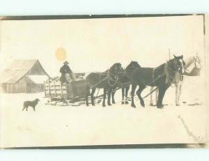 rppc Pre-1918 DOG WATCHES HORSES PULLING WAGON ON SKIS IN WINTER AC7556