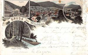 Wildbad Germany Gruss aus Scenic Views Antique Postcard J39697