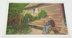 Plantation Sunny Dixie Vintage Postcard
