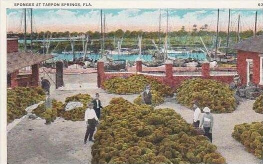 Florida Tarpon Springs Sponge At Tarpon Springs