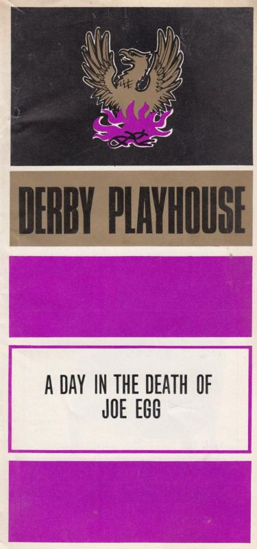 A Day In The Death Of Joe Egg Peter Nichols Derby 1970s Theatre Programme