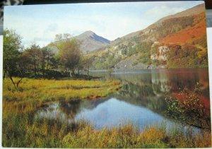 Wales Beside Llyn Gwynant Gwynedd - unposted