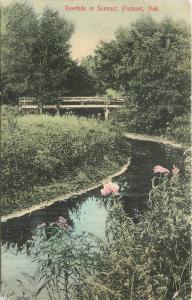 1911 Fremont Nebraska Rawhide Summer hand colored Stump postcard 12080