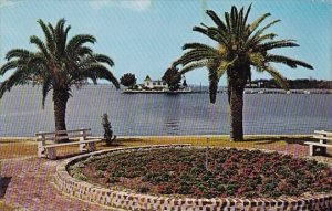 Florida Palmetto The Beauiful Waterfront Park At The Foot Of Green Bridge