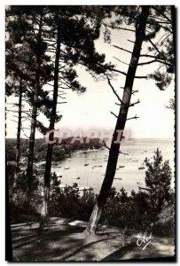 Old Postcard Arcachon Basin Echappee the basin through the pines
