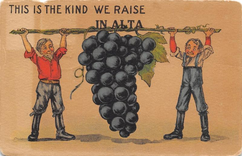 The Kind We Raise in Alta Iowa~Famers Hold Exaggerated Grapes on Pole~1914 PC