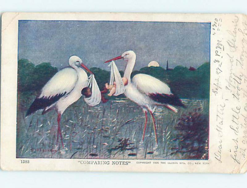 Pre-1907 black americana postcard J5849