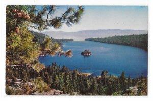 CA NV Pine Cones Lake Tahoe Emerald Bay Vintage Postcard