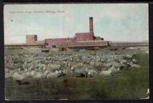 Feed Yards,Sugar Factory,Billings,MT BIN
