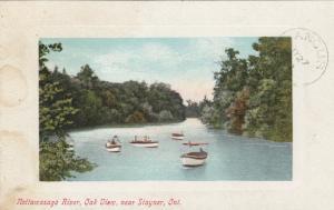 STAYNER , Ontario, Canada, 1909 ; Nottawasago River