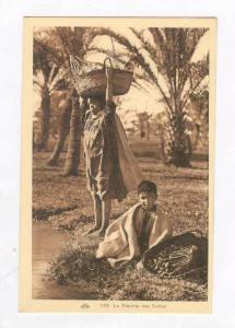 Northern Africa  Oasis 00-10s, La Recolte des Dattes #2