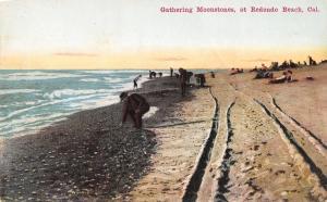 Redondo Beach California~Men Gathering Moonstones~Tire Tracks~1908 Postcard
