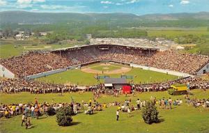 9942  PA  Williamsport      Howard J. Lamade  Little League Baseball  Field