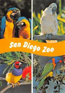 San Diego Zoo - California