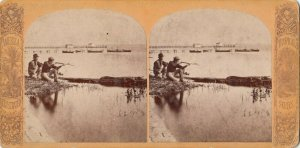 SV ; ST AUGUSTINE , Florida , 1890s ; Shooting an alligator