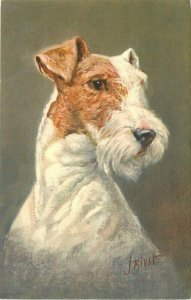 Artist impression Fox Terrier 1940s Postcard #99 Bivrst 10210