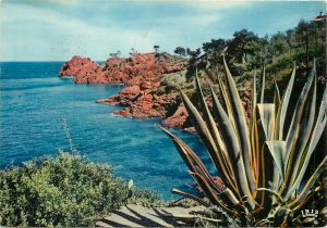 France Postcard French Riviera Cliffs of Golden Corniche picturesque view