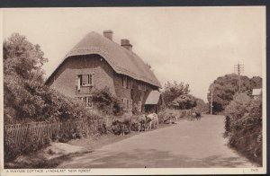 Hampshire Postcard - A Wayside Cottage, Lyndhurst, New Forest DC824