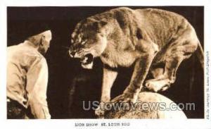 Lion Show, St. Louis Zoo St. Louis MO Unused