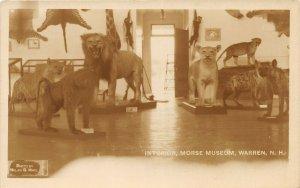 G66/ Warren New Hampshire RPPC Postcard 30s Taxidermy Morse Museum