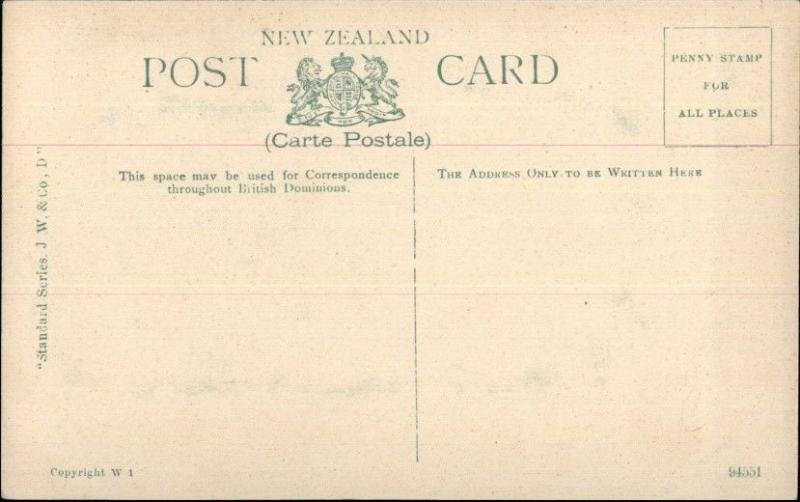 Buller New Zealand Ferry Boat Crossing the Buller c1910 Postcard