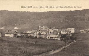 CPA Bois d'Amont (Jura) Altitude 1050 meéters Le Village et la Chaine d (150118)