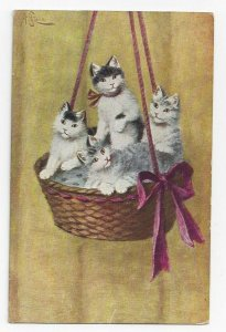 AS: Four Cats in a hanging basket with bow, PU-1909