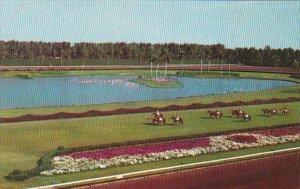 Horses Parading To Post Hialeah Race Course Miami Florida