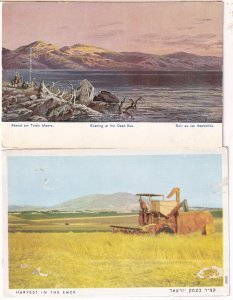 Farming Harvest In The Emek Evening At The Dead Sea 2x Isreal Postcard s