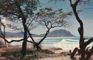 Hawaii Beautiful Beach Scene
