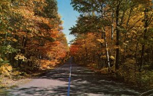 Autumn Scene on the Road in America