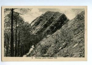 147309 INDIA KASAULI Hill Monkey point Vintage postcard