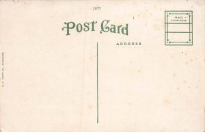 City Hall, Freeport, Illinois, early postcard, unused