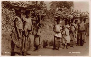 Ghana Gold Coast Plantains natives carrying Postcard