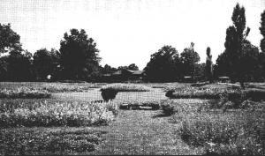 Ohio Marion Sawyer Sanatorium Lower North Terraces