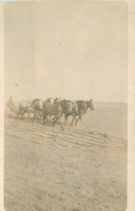 Agriculture Farming C-1910 Five Horse Plow Team RPPC real photo postcard 7917