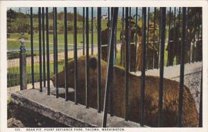 Washington Tacoma Bear Pit Point Defiance Park Curteich