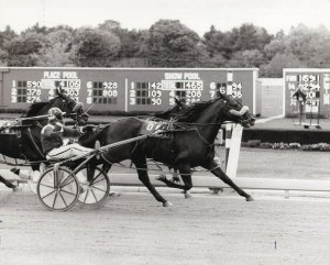 FREEHOLD RACEWAY, Marland Wordell Wins Harness Horse Race, 1983