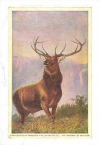 Harford Fire Insurance Company poster art  The Monarch of the Glen , 00-10s