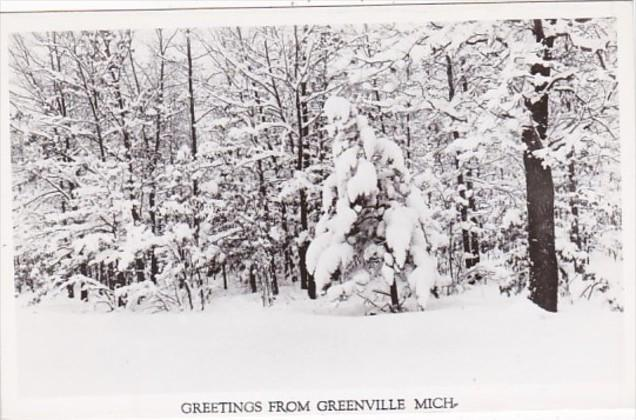 Michigan Greetings From Greenville Winter Scene Real Photo