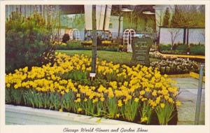 Beautiful Display At Chicago World Flower And Garden Show Mccormick Place Chi...