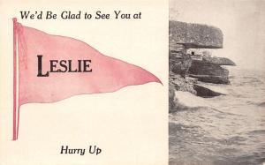 Leslie Michigan~Rock Ledges~Face Formation~Pennant Postcard 1913