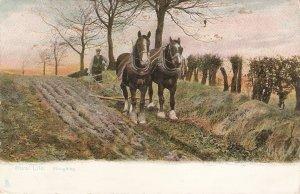 Horses at work. Ploughing Tuck Rural Life Series PC # 1421