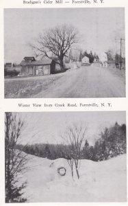 FORESTVILLE , New York , 40-50s ; Bradigan's Cidar Mill & Creek Road in Winter