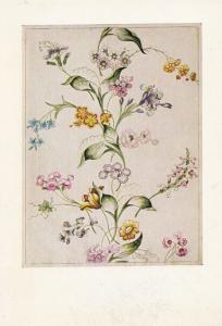 Anna Marie Garthwaite Design For Woven Silk Painting Postcard