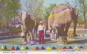 Missouri St Louis The Elephant Show St Louis Zoo