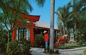 FL - Indian Rocks Beach. The Lotus House, Tiki Gardens